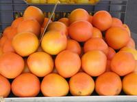 Marché de Versailles Oranges