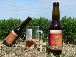 Bière Volcelest